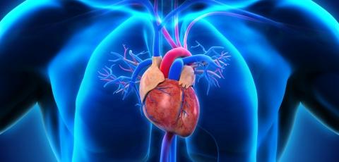 Heart Attack Sub Service Image
